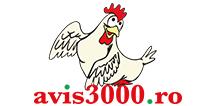 Avis 3000 - Complex integrat de pui